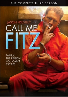Call Me Fitz movie poster (2010) poster MOV_a976250f