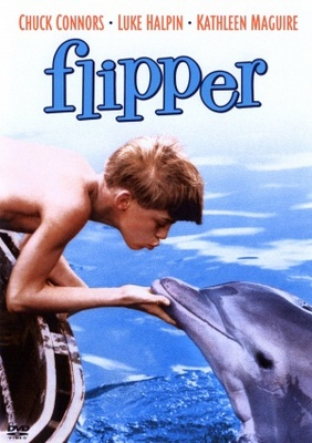 Flipper movie poster (1963) poster MOV_aaa92c9f