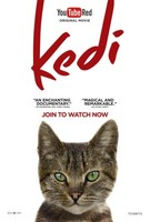 Kedi movie poster (2017) picture MOV_aci4pykg
