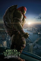 Teenage Mutant Ninja Turtles movie poster (2014) picture MOV_af16c4fd