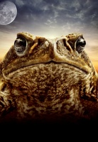 Cane Toads: The Conquest movie poster (2009) picture MOV_af7b550b