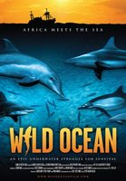 Wild Ocean 3D movie poster (2008) picture MOV_b382268a