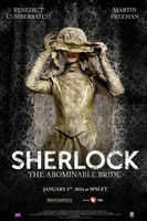 Sherlock movie poster (2010) picture MOV_b44098b9