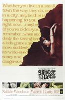 Splendor in the Grass movie poster (1961) picture MOV_b48c51ec