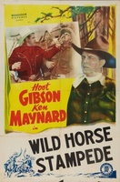 Wild Horse Stampede movie poster (1943) picture MOV_b61c833d
