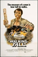 Walking Tall movie poster (1973) picture MOV_b67668a1