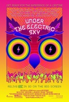 EDC 2013: Under the Electric Sky movie poster (2013) picture MOV_b694093b