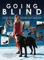 Going Blind movie poster (2010) picture MOV_b70238cc