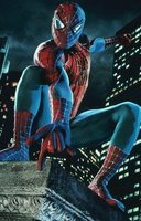 Spider-Man movie poster (2002) picture MOV_b73a3a1f