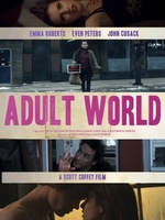 Adult World movie poster (2013) picture MOV_b875daeb