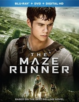 The Maze Runner movie poster (2014) picture MOV_bb203169