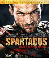Spartacus: Blood and Sand movie poster (2010) picture MOV_bbc88ca6