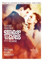 Splendor in the Grass movie poster (1961) picture MOV_be3dc0e3