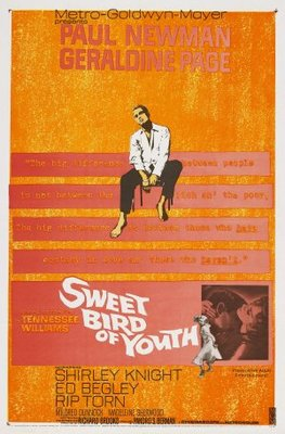 Sweet Bird of Youth movie poster (1962) poster MOV_bedc73eb