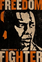 Mandela: Long Walk to Freedom movie poster (2013) picture MOV_c084d778