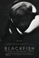 Blackfish movie poster (2013) picture MOV_c0f8241e