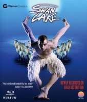 Swan Lake movie poster (2012) picture MOV_c3c79512