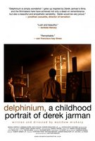Delphinium: A Childhood Portrait of Derek Jarman movie poster (2009) picture MOV_c6c90ec4