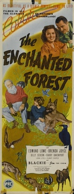 The Enchanted Forest movie poster (1945) poster MOV_c77fedf6