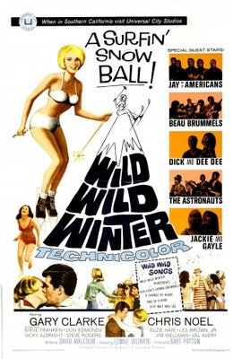 Wild Wild Winter movie poster (1966) poster MOV_c84c6f26
