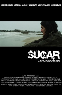 Sugar movie poster (2011) poster MOV_c8d487c3
