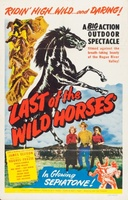 Last of the Wild Horses movie poster (1948) picture MOV_cb46e7d9