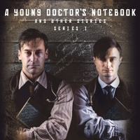 A Young Doctor's Notebook movie poster (2012) picture MOV_cd3c0cca