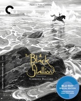 The Black Stallion movie poster (1979) picture MOV_cdda74c0