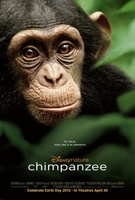 Chimpanzee movie poster (2012) picture MOV_cf540621