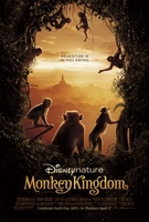 Monkey Kingdom  (2015) picture MOV_cf93c446