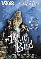 The Blue Bird movie poster (1918) picture MOV_d06a4f63