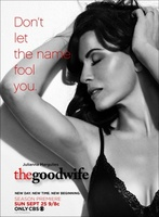 The Good Wife movie poster (2009) picture MOV_d08421cc