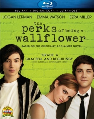 The Perks of Being a Wallflower movie poster (2012) poster MOV_d09e2522