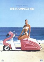 The Flamingo Kid movie poster (1984) picture MOV_d2e32f62