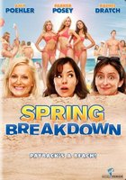 Spring Breakdown movie poster (2009) picture MOV_d5315ff5