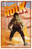 The Incredible Hulk movie poster (1978) picture MOV_d605bf9f