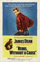 Rebel Without a Cause movie poster (1955) picture MOV_d68e733d