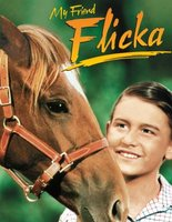 My Friend Flicka movie poster (1943) picture MOV_d76918df