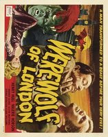 Werewolf of London movie poster (1935) picture MOV_d94eba9d