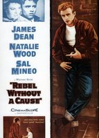 Rebel Without a Cause movie poster (1955) picture MOV_d9ac56ec