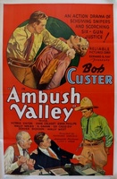 Ambush Valley movie poster (1936) picture MOV_dba0cc42