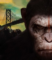 Dawn of the Planet of the Apes movie poster (2014) picture MOV_de1e472c