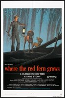Where the Red Fern Grows movie poster (1974) picture MOV_de6795c4