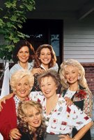 Steel Magnolias movie poster (1989) picture MOV_def4687c