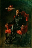 The Hunger Games: Catching Fire movie poster (2013) picture MOV_dfcdec09