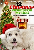 12 Wishes of Christmas movie poster (2011) picture MOV_e27e0e6d
