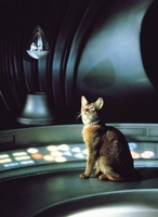 The Cat from Outer Space movie poster (1978) picture MOV_e3e6dd9e