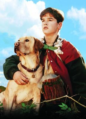 Far from Home: The Adventures of Yellow Dog movie poster (1995) poster MOV_e6d9ec0d