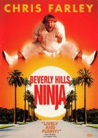Beverly Hills Ninja movie poster (1997) picture MOV_e743de65