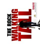 Walking Tall movie poster (2004) picture MOV_e79e964f